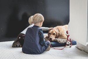 Kinder streicheln einen Hund der auf dem Boden liegt