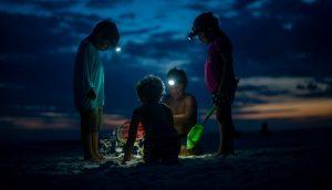 Vier Kinder spielen im Sand